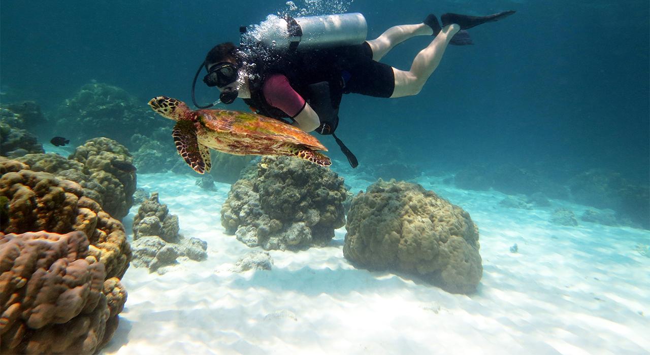ダイビングサプライヤーSMILEin沖縄